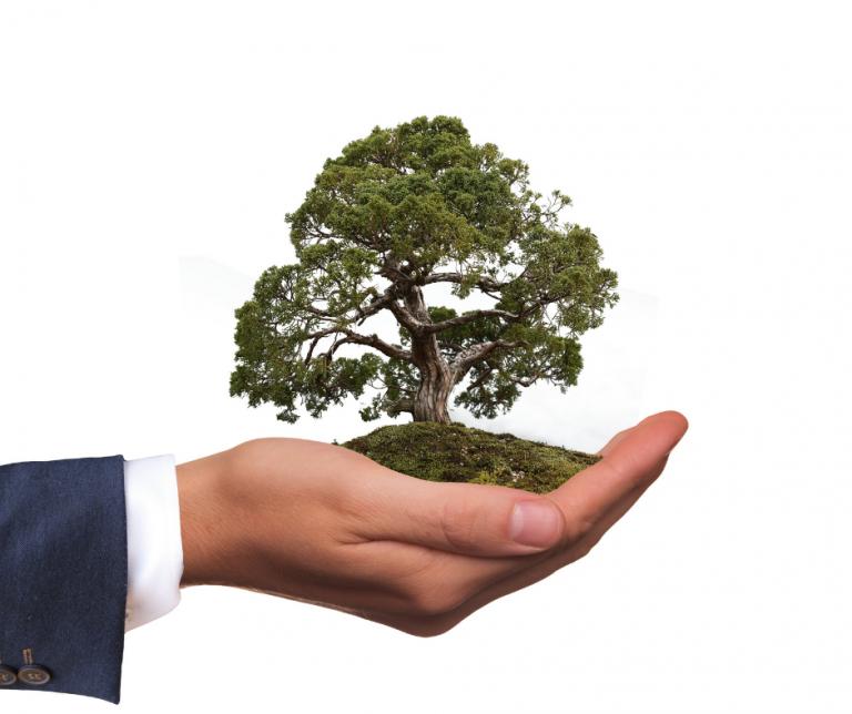 Διαβάστε περισσότερα για το άρθρο Athens Business Green Toolkit